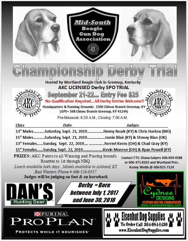 Derby Championship ad