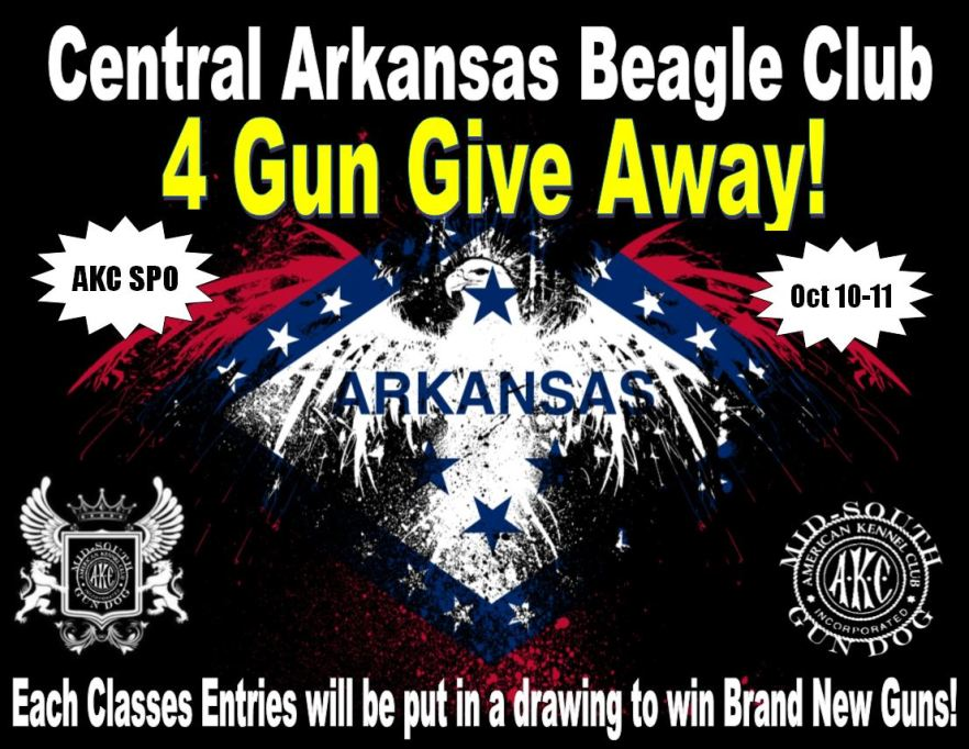 4 Gun Give Away
