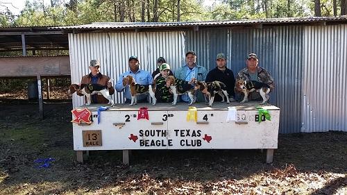 win South TX 13 inch males Jan 22